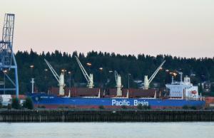 Photo of MOUNT ASO ship