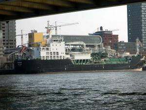 Photo of CARDISSA ship