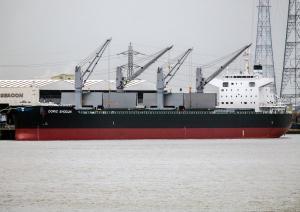 Photo of DORIC SHOGUN ship