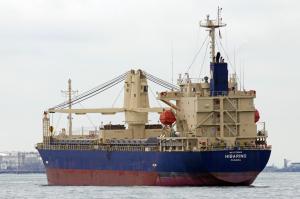 Photo of HIBARINO ship