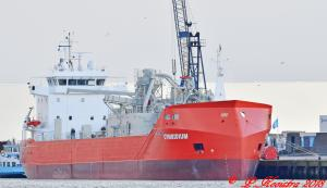 Photo of CYMBIDIUM ship