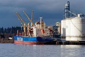 Photo of OTAGO BAY ship