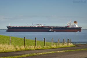 Photo of ELANDRA FALCON ship