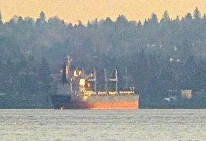 Photo of LAUREL ISLAND ship