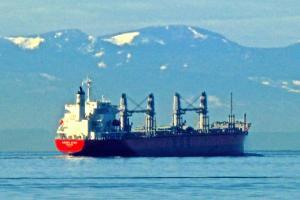 Photo of AMBER STAR ship
