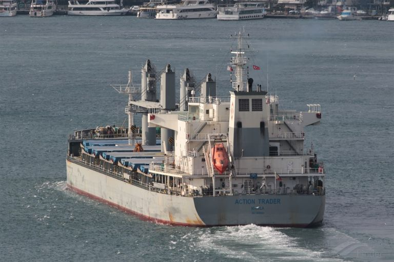 ACTION TRADER, Bulk Carrier - Detalles del buque y