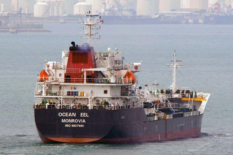 OCEAN EEL photo