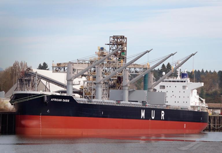 African Oasis Bulk Carrier Details And Current Position Imo